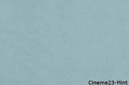 Cinema 23 Mint