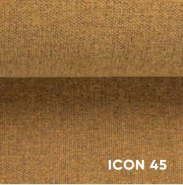Icon45