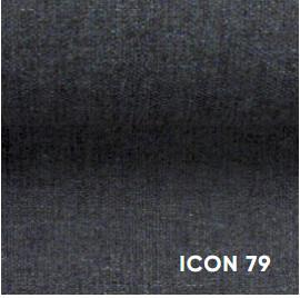 Icon79