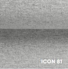 Icon81