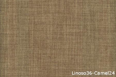Linoso 36 Camel 24