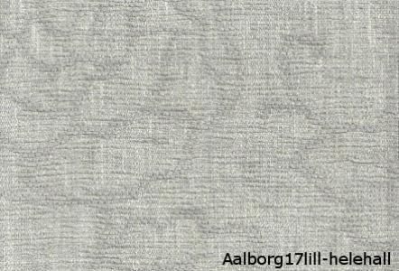 Aalborg17lillhelehall