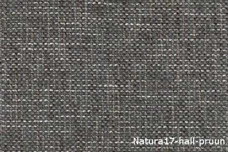 Natura17-hallpruun