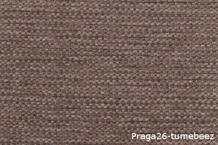 Praga26-tumebeez